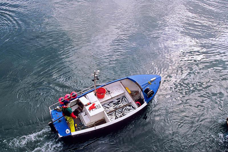 Inmara Marine Resource Advice Project Inshore