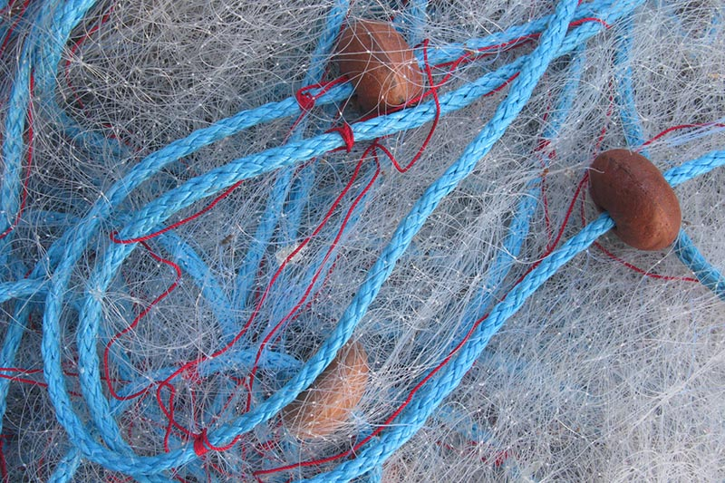 Inmara Marine Resource Advice Dutch Gillnet fisheries